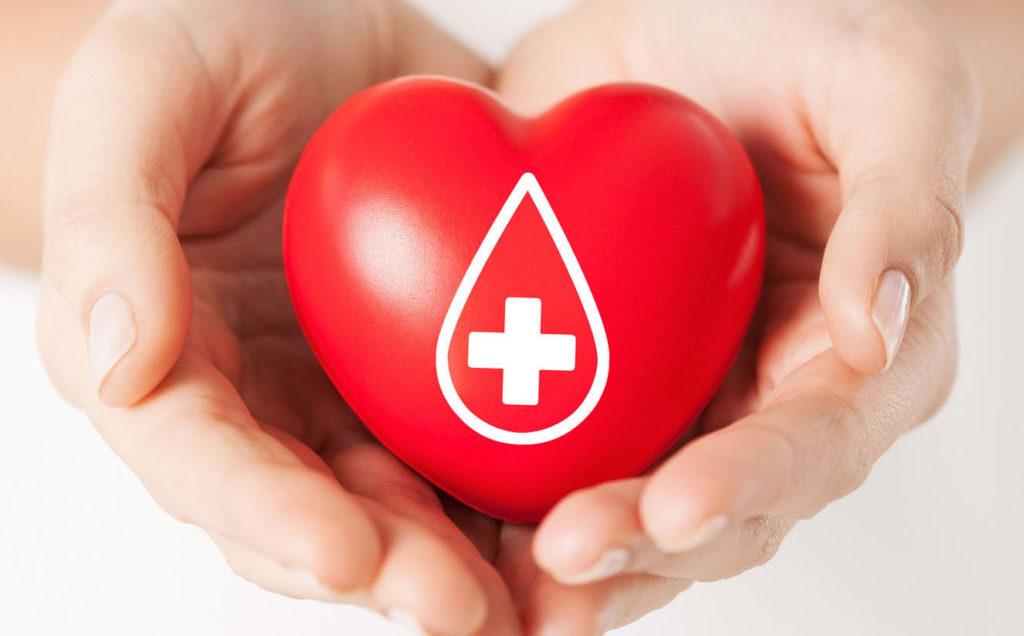 Cruz Vermelha Facilita e Gratifica Quem Salvar Vidas Nesta Temporada de Festas